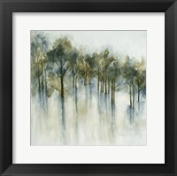 Framed Forest Glen