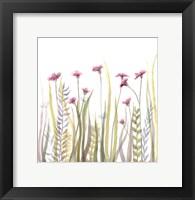Framed Garden Blooms 1