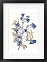Indigo Flowers Framed Print