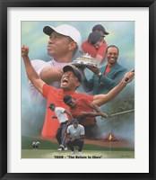 Framed Tiger Woods