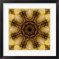 Framed Colorful Kaleidoscope 4