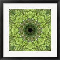 Framed Colorful Kaleidoscope 11