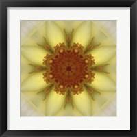 Framed Colorful Kaleidoscope 21