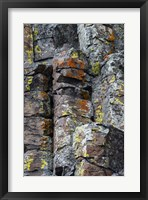 Framed Sheepeater Cliffs Detail, Yellowstone National Park