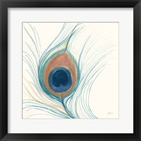 Framed Peacock Feather II Blue
