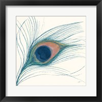Framed Peacock Feather I Blue