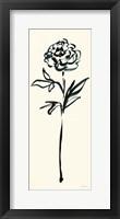 Framed Floral Line II on Cream