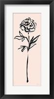 Framed Floral Line II on Pink