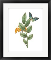 Framed Greenery Butterflies I