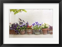 Framed Attractive Flowers In Clay Pots