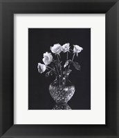 Framed Dramatic Roses