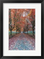 Framed Autumn Country Lane