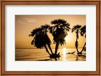 Framed Sunrise On The Beach, Through The Palms
