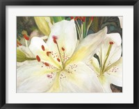 Framed Macro Lilies