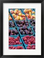 Framed Cherries and Berries