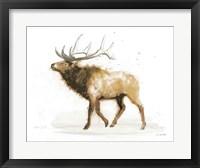 Framed Elk v.2 Full
