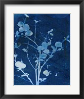 Framed Enchanted Cyanotype VI