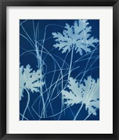 Framed Enchanted Cyanotype IV