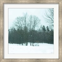 Framed Snowfall