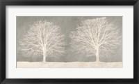 Framed Trees on Grey