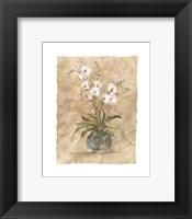 Framed White Orchids I