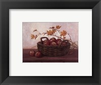 Framed Winesap and Maples