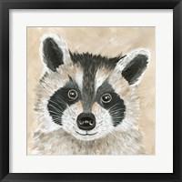 Framed Roxie the Raccoon