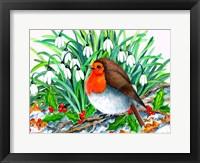 Framed Christmas Robin