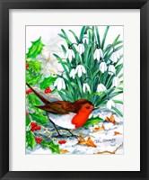 Framed Robin's Return