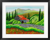 Framed Tuscany Poppies