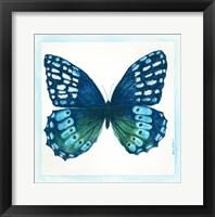 Butterfly I Framed Print
