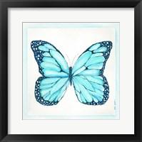 Butterfly IV Framed Print