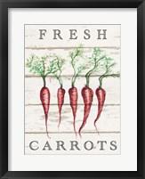 Framed Fresh Carrots
