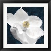 Framed Painted Magnolia