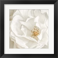Framed Neutral Rose No. 3