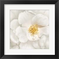 Framed Neutral Rose No. 4