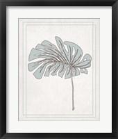 Tropical Monstera IV Framed Print