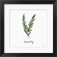 Framed Herbs III White