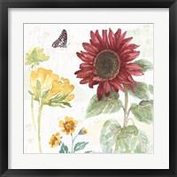 Framed Sunflower Splendor VI
