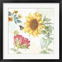 Framed Sunflower Splendor VIII