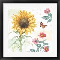 Framed Sunflower Splendor V