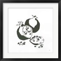 Framed Pomegranate II BW