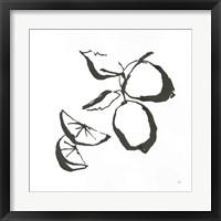 Framed Limes BW