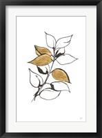 Framed Leafed VII