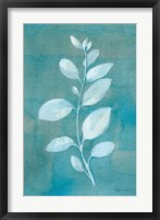 Cool Leaves II Framed Print