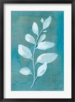 Cool Leaves I Framed Print