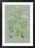 Flowering Plants II Green Linen Framed Print
