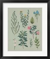 Victorian Garden VI Framed Print