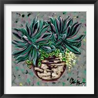 Framed Succulent Pot I