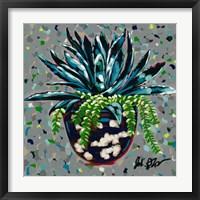 Framed Succulent Pot II